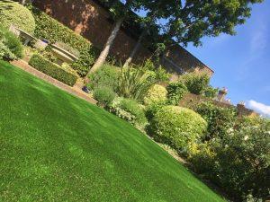 Artificial Grass V Real turf